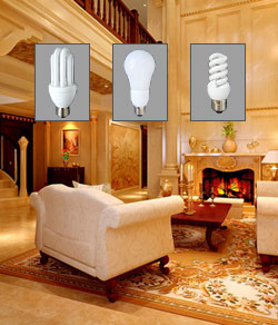 View all compact fluorescent bulbs