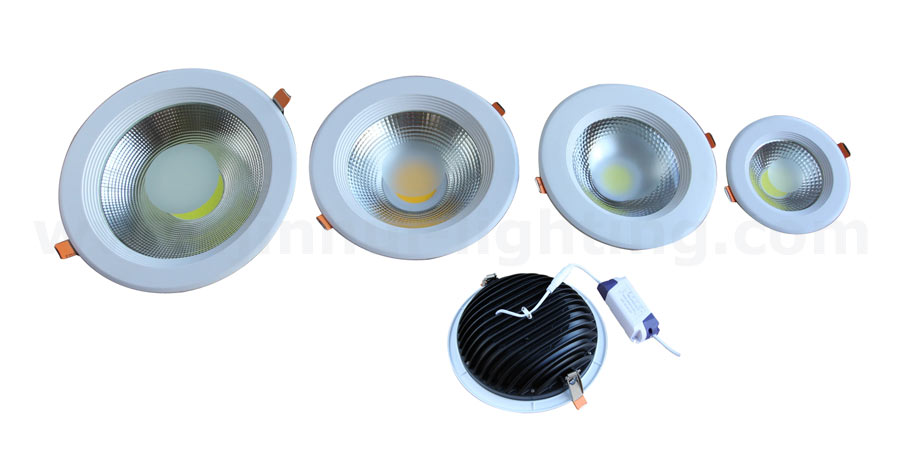 picture (image) of led-down-light.jpg